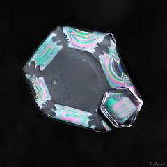 Snowflake: Vibrant Enigma
