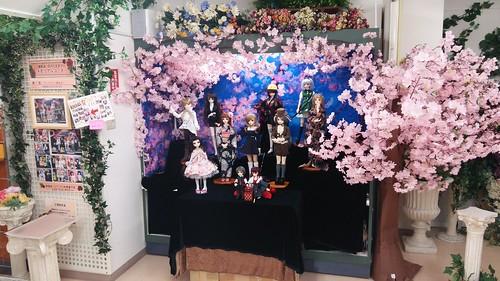 立川SR撮影会「お花見(夜桜風)」