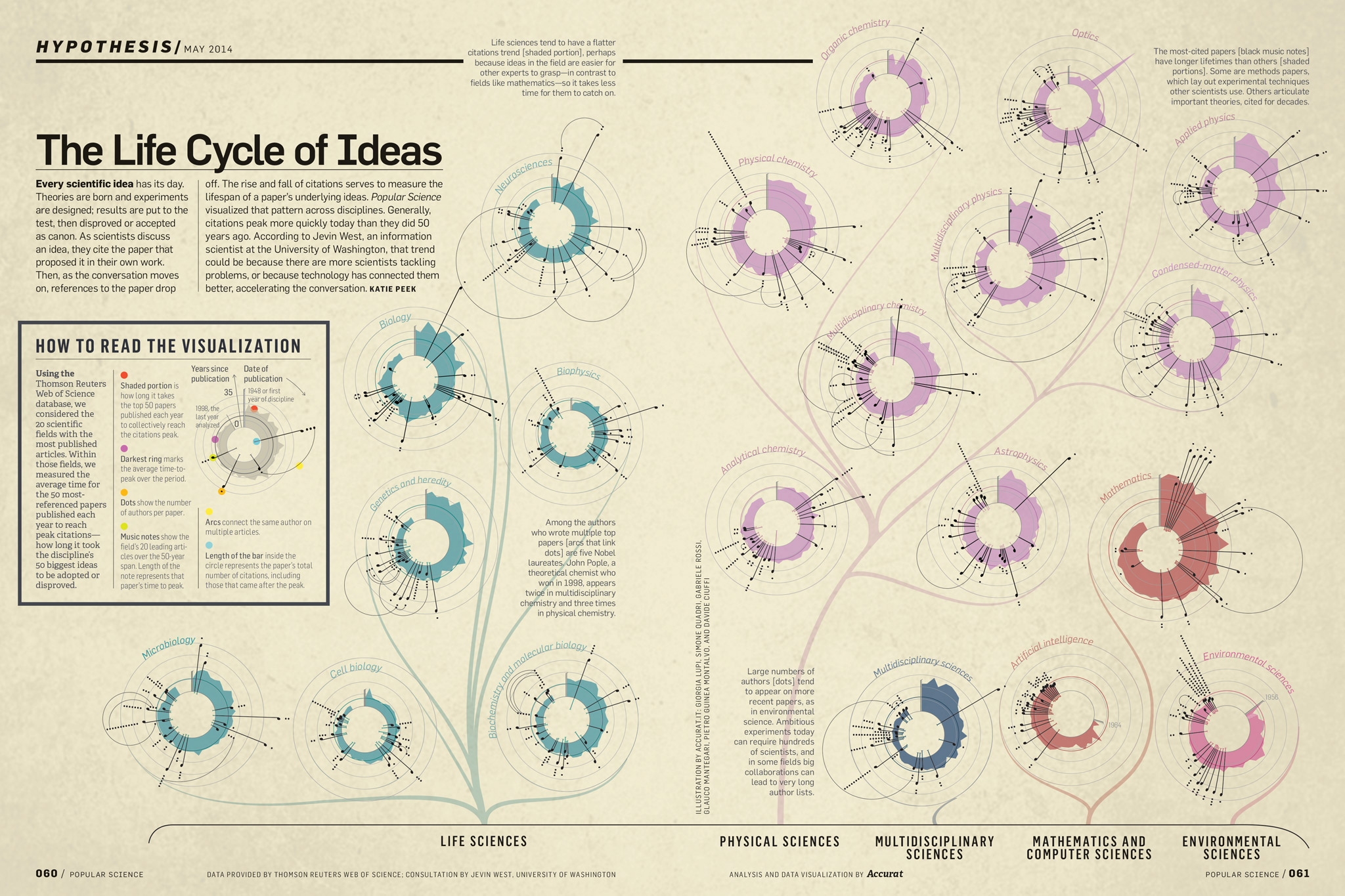 The Life Cycle of Ideas