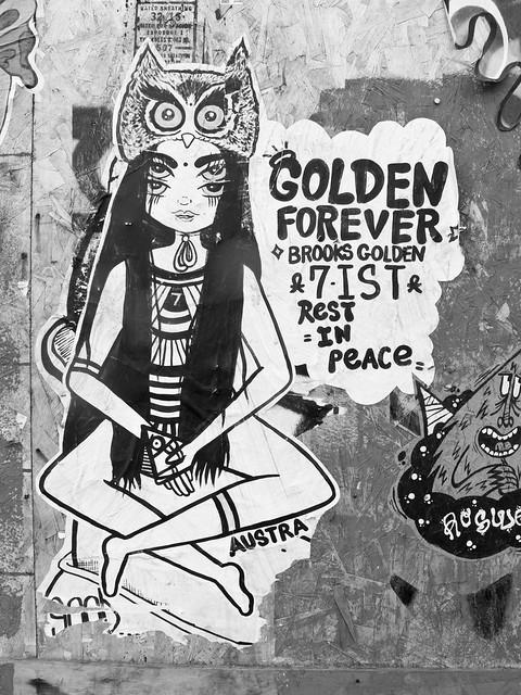 271/365 - Golden Forever