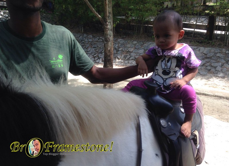 Pony Ride Farm in The City, Seri Kembangan - Kelab Blogger Ben Ashaari