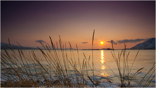 winter sunset sea sky sun sol nature vinter natur arctic fjord hav