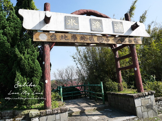 陽明山賞櫻花景點水濂洞