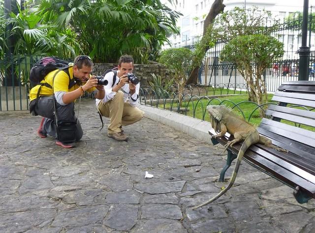 Sele y Chavetas en Guayaquil (Ecuador)