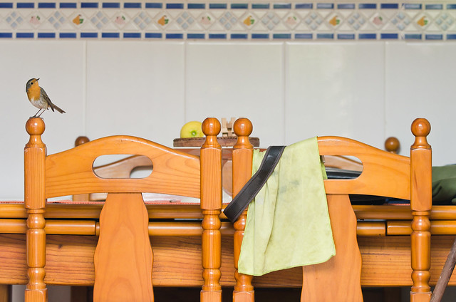 Mucha mesa de cocina y poca comida