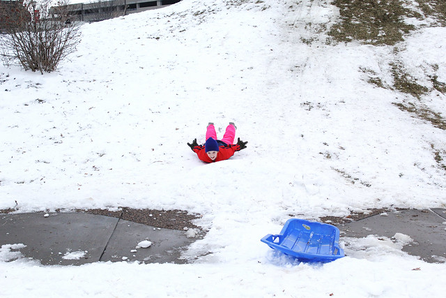 Snow Days // Sledding