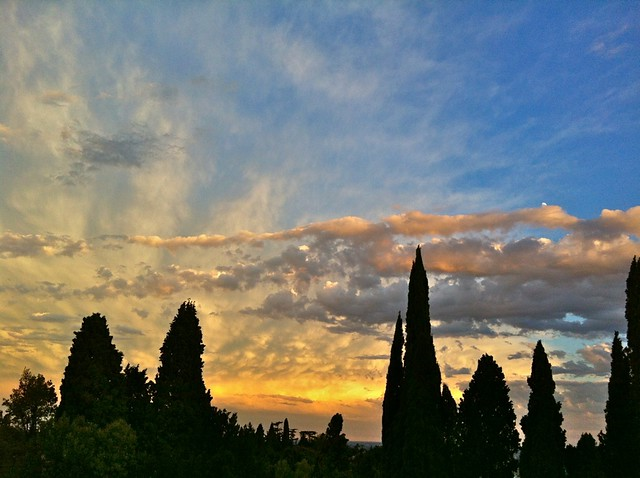 Clouds in sunset glow over the cypresses