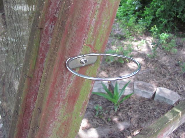 Bird dish ring planter