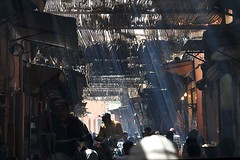 Streiflicht in Marrakech