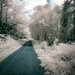 Badger State Trail - Infrared