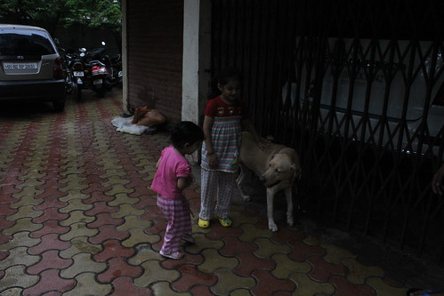Lucky The Labrador And My Grand Kids by firoze shakir photographerno1