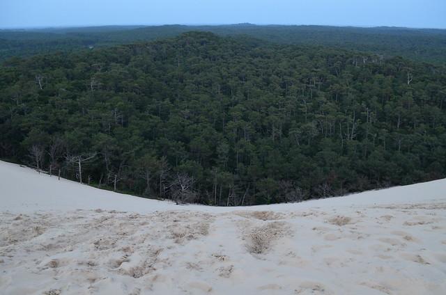france_dune_du_pyla_duneofpilat_forest_concave_view