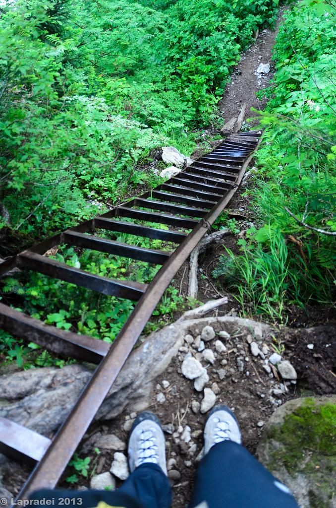 20130812 鉄の梯子