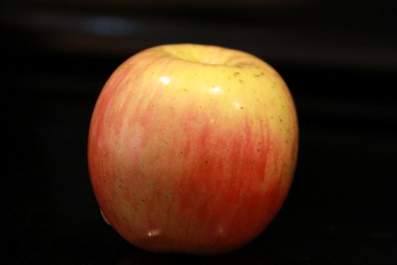 fruit (6)