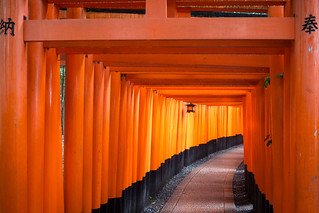 The path of thousands of Torii