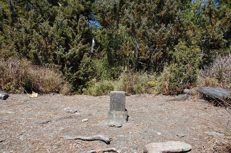 布拉克桑山森林三角點(Elev. 3025 m) 1