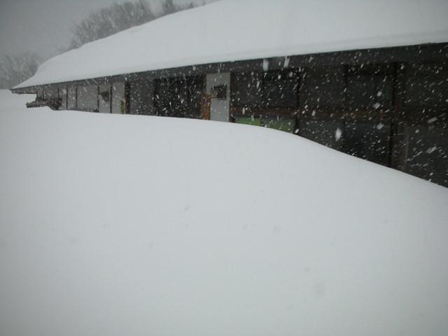 集合したときには,大きな雪がどんどん降っていた.