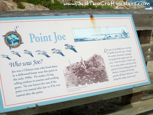 Point Joe