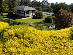 Cowra Japanese Garden and tea rooms.