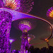 Gardens by the Bay Lightshow, Singapore by eric_hevesy