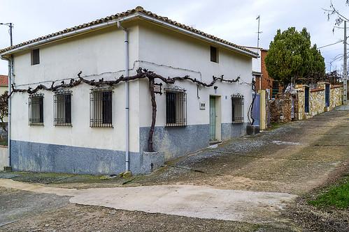 0044-Bujaralo-Guadalajara