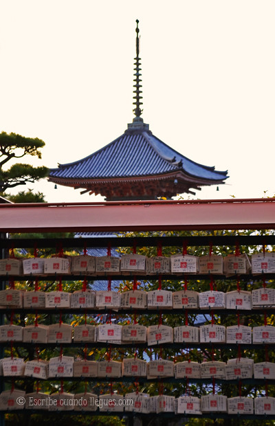 Ritos japoneses15