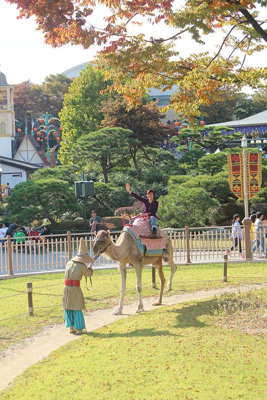 Rebecca Saw - riding camel - Everland Seoul Korea