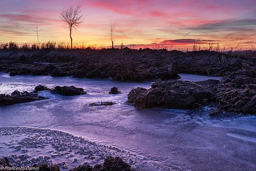 italy ice sunrise canon dawn italia alba piemonte ricefield ghiaccio risaia novara proh canoneos60d tamronsp1750mmf28xrdiiivcld