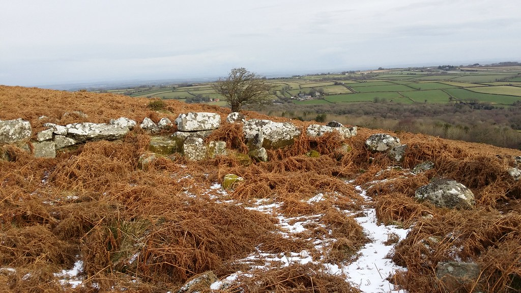 Hut circle #sh #dartmoor