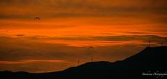 Coucher de soleil à Tétouan - Maroc
