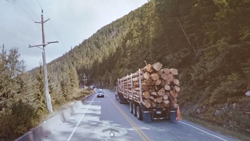 So many trees. #ridingthroughwalls in BC