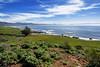 Estero Bay California-Central-Coast-2016-05-25