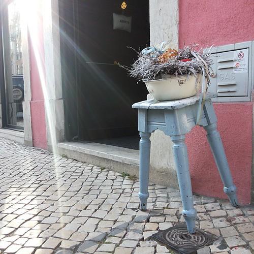 #Lisbon #lisboa #citylandscape #urbanlandscape #colors #flowerpot by Joaquim Lopes