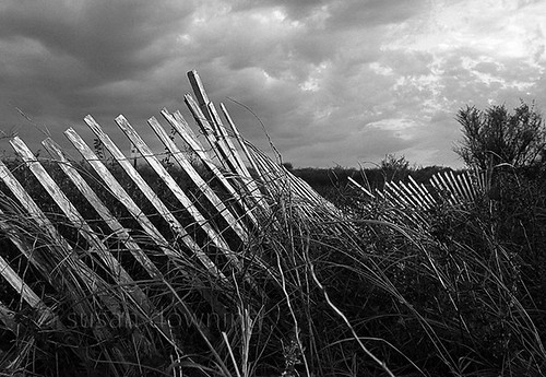 Between Fronts BW