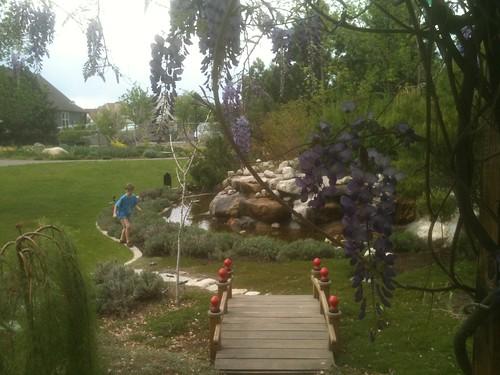 conservation garden