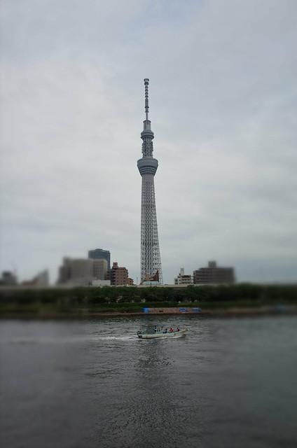 Tokyo Hotaru Light Symphony 2013-09 miniature