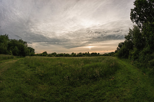 uk trees sunset england distortion detail green nature grass lines clouds landscape outdoors prime reading britain geometry twyford quality sony barrel diagonal fisheye explore 180 resolution manual f56 curve iq a4 berkshire pse spherical linear topaz loddon lightroom 180degrees wokingham nex bathroad aspherical thamesvalley samyang charvil apsc mirrorless 288mm maistora riverloddon 5r oldbathroad emount yahoo:yourpictures=weather exploredjun2013