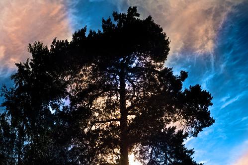 blue light sunset sky contrast flickrexplore konicahexanon sonynex ilobsterit