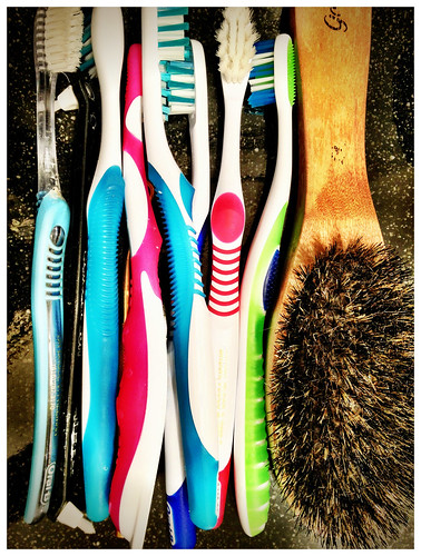 There's way too many of us and who invited hair brush ? - #174/365 by PJMixer
