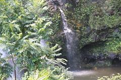 Hana highway waterfall