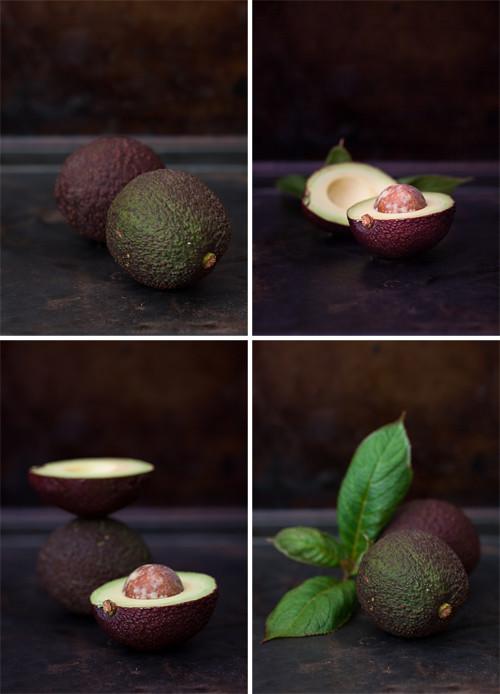 Avocado 4