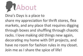 About Dina