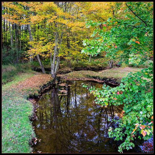 reflection ride unitedstates newhampshire swanzey vertorama fall2013
