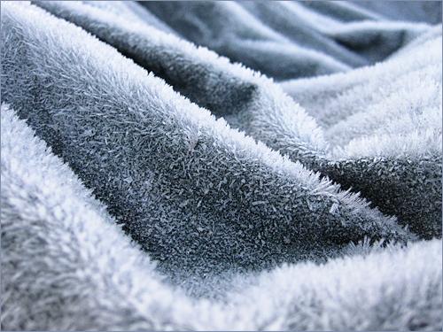 frosttarp