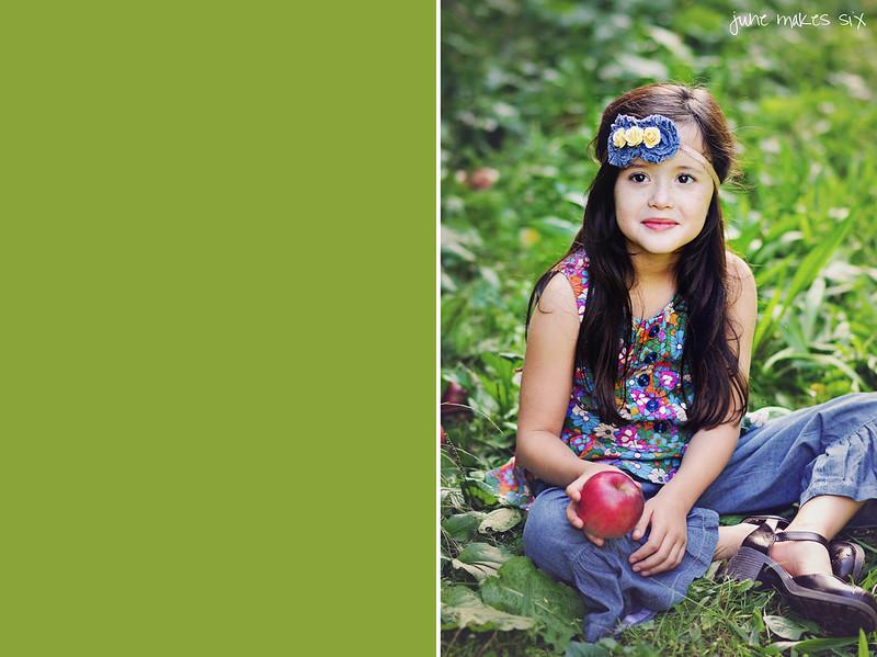 orchard-1020dvmwmfb1