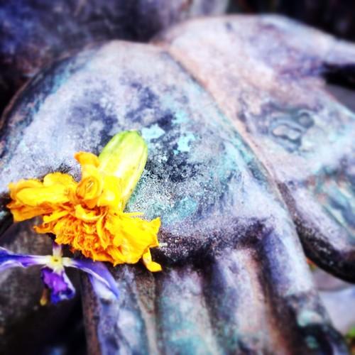 My Kasai Girl's Hands Thankful for ShabbaT