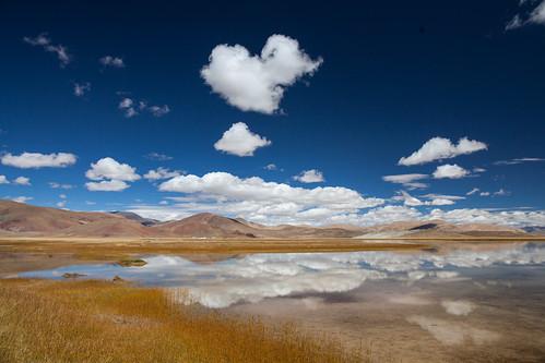 china tibet shigatse wetland xizang 西藏 tsang 日喀则 xigaze rikaze 后藏 zhongbacountry tibet2013 southofshigate