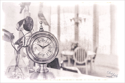 Monochromatic image of plant and clock