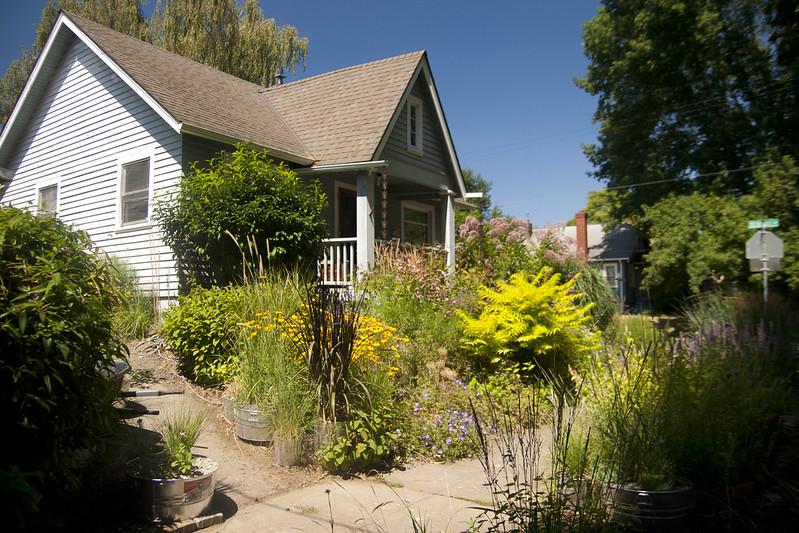august garden with lauren 2