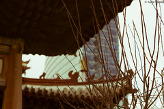 Temple Mongol